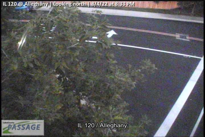 camera snapshot for IL 120 at Alleghany